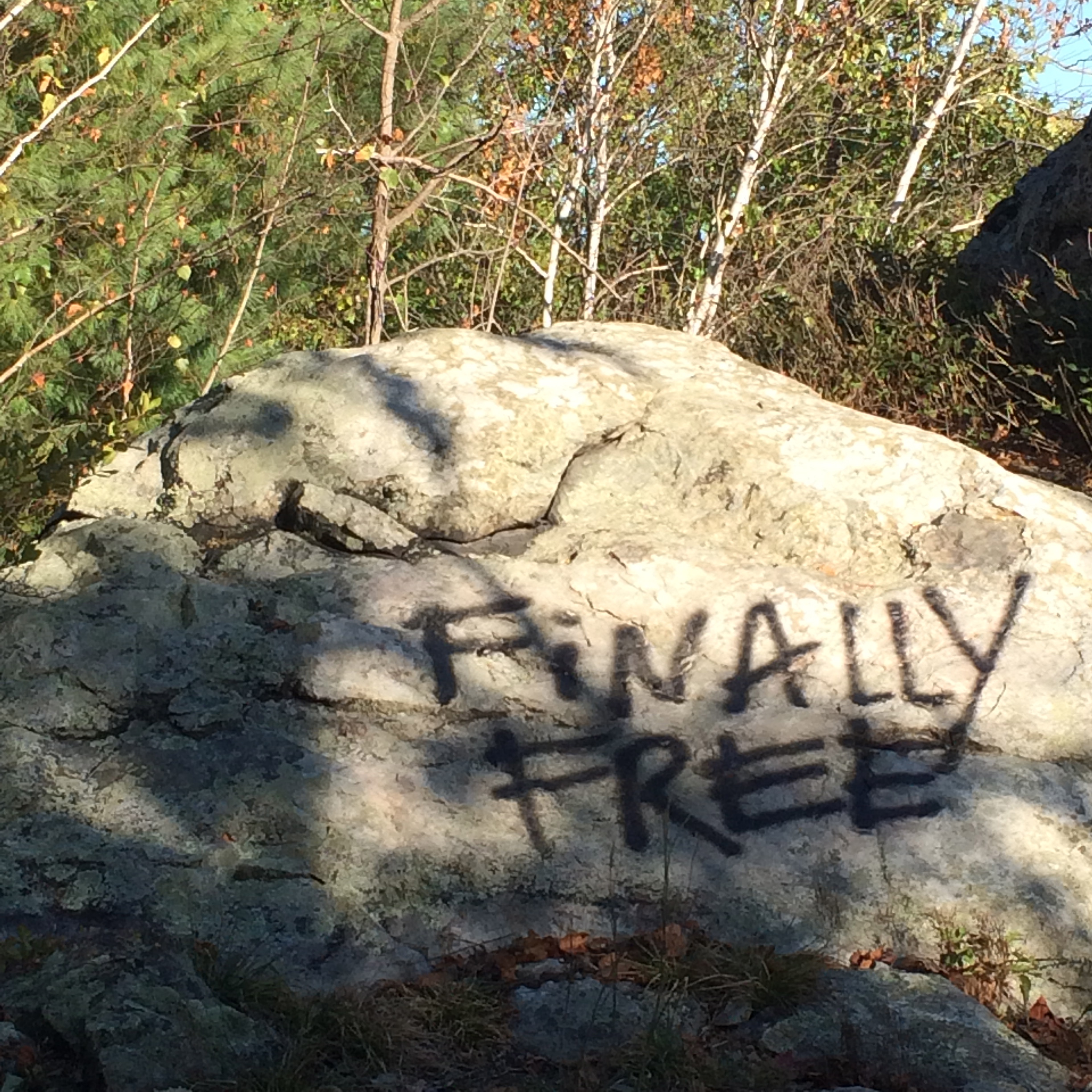 "a graffitied rock in breakheart reservation that says ""finally free"""