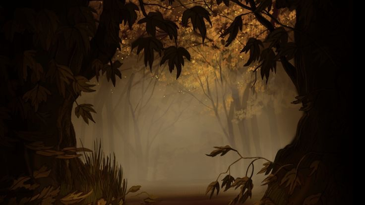 a spooky misty forest