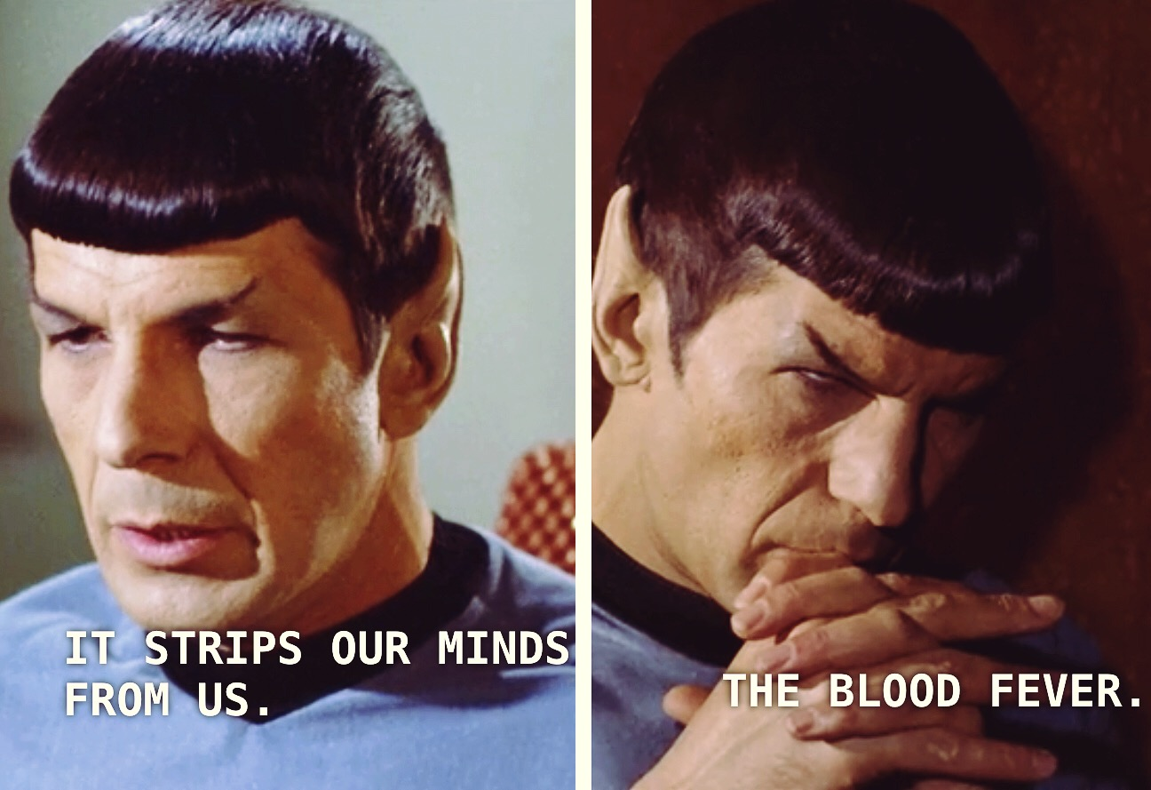 "Spock says ""It strips our minds from us...the blood fever"""